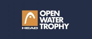 HEAD_OWT_logo